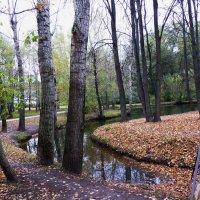 осень.... :: Galina Leskova