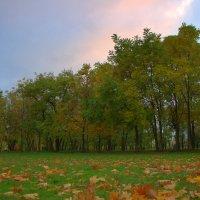В Таганрогском парке :: оксана косатенко