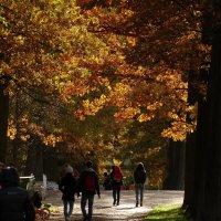 Осень в Пушкине. :: виктория Скрыльникова
