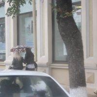 В Краснодаре дождь :: Наталья Лунева