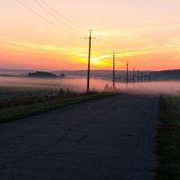 Утром за грибами.. :: Владимир Сквирский