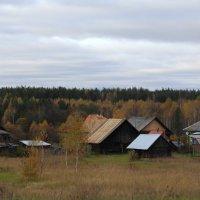 Стоит средь лесов деревенька :: Татьяна Ломтева
