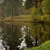 У озера :: Vasiliy V. Rechevskiy