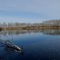 октябрьское озеро :: Анна