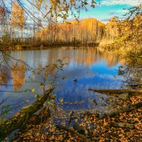 Окно в осень :: vladimir Bormotov