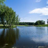 Озеро. :: Владимир Безбородов