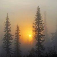 Восход в тумане :: Сергей Чиняев