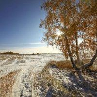 И слышатся песни, осени снежной 6 :: Сергей Жуков