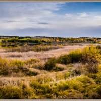 Панорама поймы реки Миасс :: Марк Э