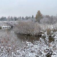 Снежный октябрь :: Вера Андреева