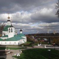 Ветреный день :: Евгения Куприянова