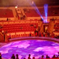 Цирк на Фонтанке во время антректа! (Санкт-Петербург) :: Светлана Калмыкова