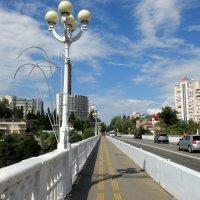 Сочи. Прогулка по Верещагинскому мосту-виадуку :: Нина Бутко