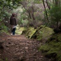 Вечнозелённые леса Анага :: Bogdan Snegureac