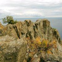 На Крымском побережье. :: Сережка Фантом