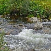река Нижняя Буйба :: Андрей В