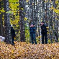 Осень - лучшая пора для фотосессий. :: Владимир Безбородов