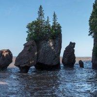 Узнаёте? Здесь мы бродили недавно по сухому дну, см др.снимки  (Hopewell Cape Rocks). Канада. :: Юрий Поляков