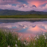 Лето в Долине великанов :: Денис Будьков