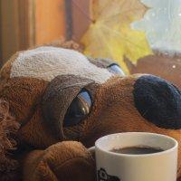 холода нагоняют грусть :: Любовь Потравных