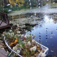 Осень :: МИЛА Иванова