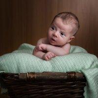 Newborn :: Aнатолий Бурденюк