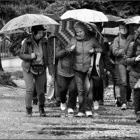 очень дождливый день :: Jiří Valiska
