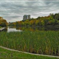 Московская осень :: Дмитрий Анцыферов