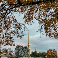 Осень в Питере :: Valerii Ivanov