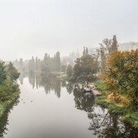 Утро туманное..................... :: Александр Селезнев