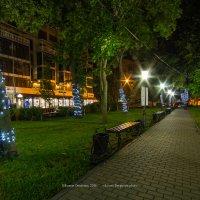 Петровский сквер ночью :: Roman Dergunov