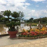 Парк цветов в Далате.Вьетнам. :: Татьяна Калинкина