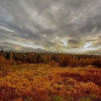 Природа осень. :: סּﮗRuslan HAIBIKE Sevastyanovסּﮗסּ