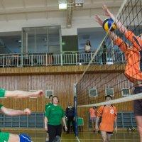 Соревнования по волейболу 2 :: Людмила Мозер