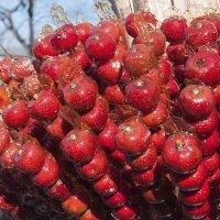 Яблоки в Пекине :: Юля Мельникова