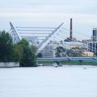 Мост :: Ольга Васильева