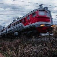 Мчащийся в осень..... :: Лариса Тарасова