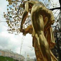 Одни дамы В...золоте другие ИЗ золота..)) :: tipchik