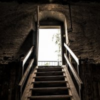 out of the basement :: Dmitry Ozersky