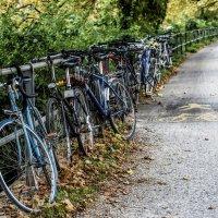 street bike :: Dmitry Ozersky
