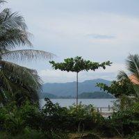 Крошечный остров-заповедник :: Лариса (Phinikia) Двойникова