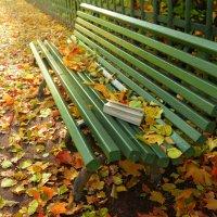 Скоро попрощаемся с осенью :: Наталия П