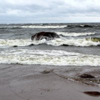 Накануне шторма :: Svetlana Lyaxovich