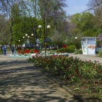 В апреле :: Игорь Сикорский