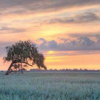 Одиночество :: Юрий Спасенников