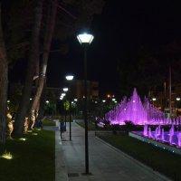 Ночной фонтан. :: Оля Богданович