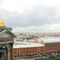 Крыши Петербурга :: Константин Поляков