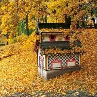 И от осени не спрятаться, не скрыться, :: Swetlana V