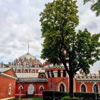 Петровский путевой дворец :: Константин Поляков