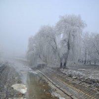 ...над тихою речушкой без названия... :: Александр Бойко